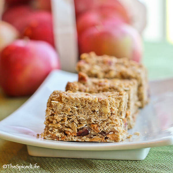 Pecan and Oat Streusel Topped Oatmeal Bars with Dried Apples and Cranberries