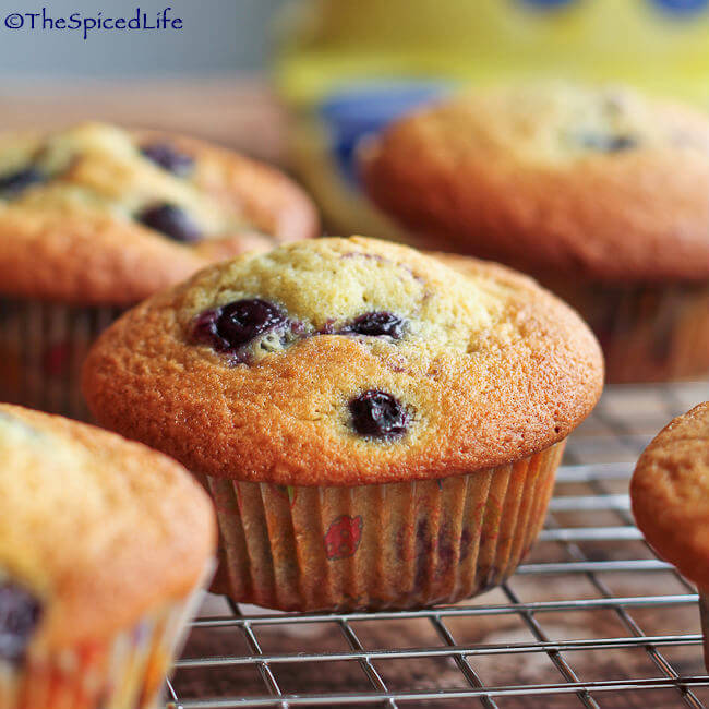 Blueberry Cream Cheese Muffins - The Spiced Life