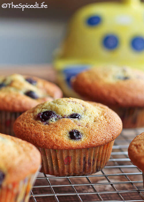 Simple Blueberry Muffins made tangy with cream cheese