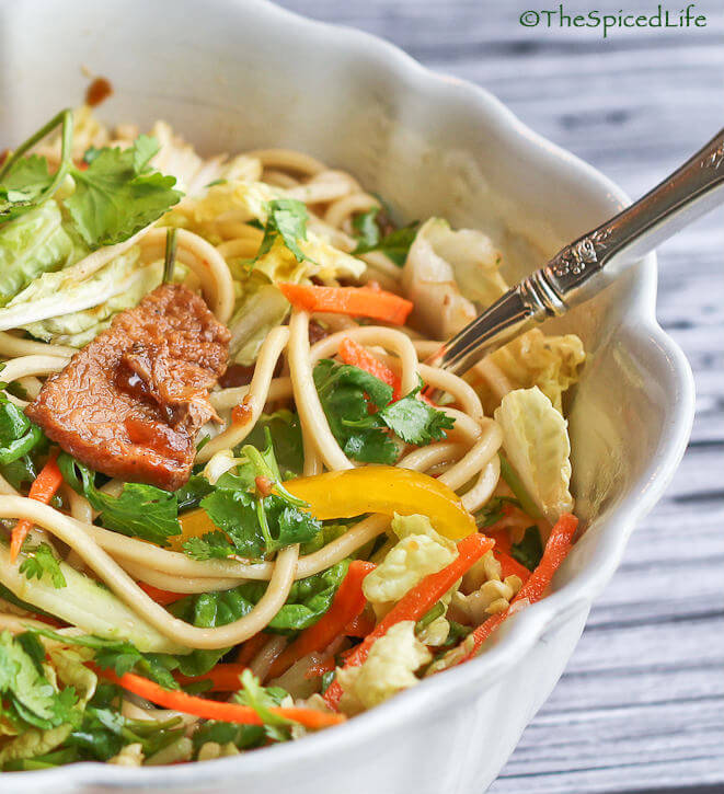 Asian Pork Noodle Salad--using the slow cooker!