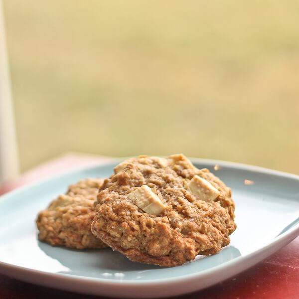 Salted Vanilla Oatmeal Cookies