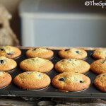 dog photo bombing blueberry muffin photo