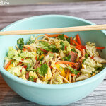 Asian Shredded Pork and Noodle Salad: The New Slow Cooker cookbook reviewed