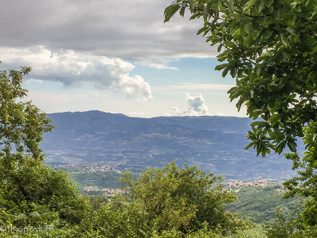 View from near the top of Sila Grande, Calabria, Italy