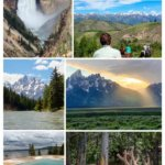 Visiting Yellowstone and Teton National Parks collage